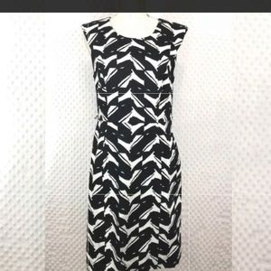 Premise Black and White Dress knee length Size 8
